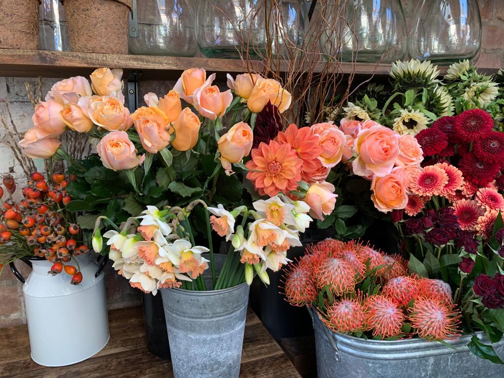 Scarecrow Flowers Auckland